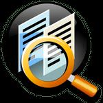 Duplicate File Detective