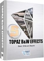 Topaz B W Effects