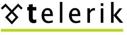 Telerik OpenAccess ORM 2012 1.329 - کامپوننت Telerik